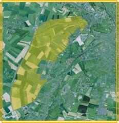 borealia2.jpg
