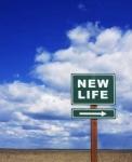 nouvelle vie.jpg