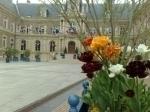 HDV Amiens.jpg